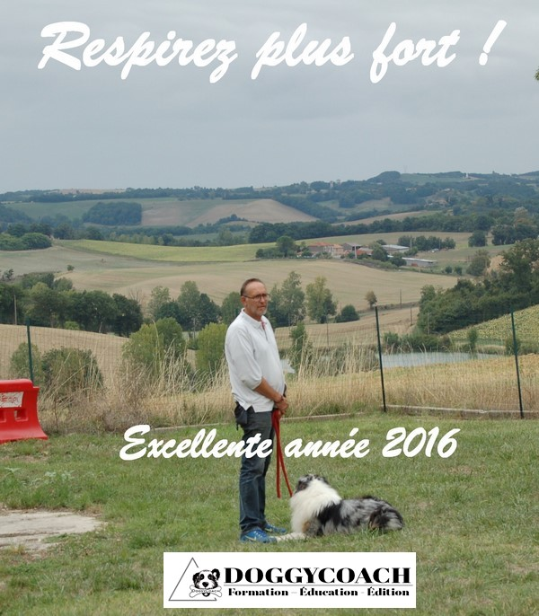 voeux 2016 doggycoach
