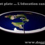 La terre est plate ... l'éducation canine aussi