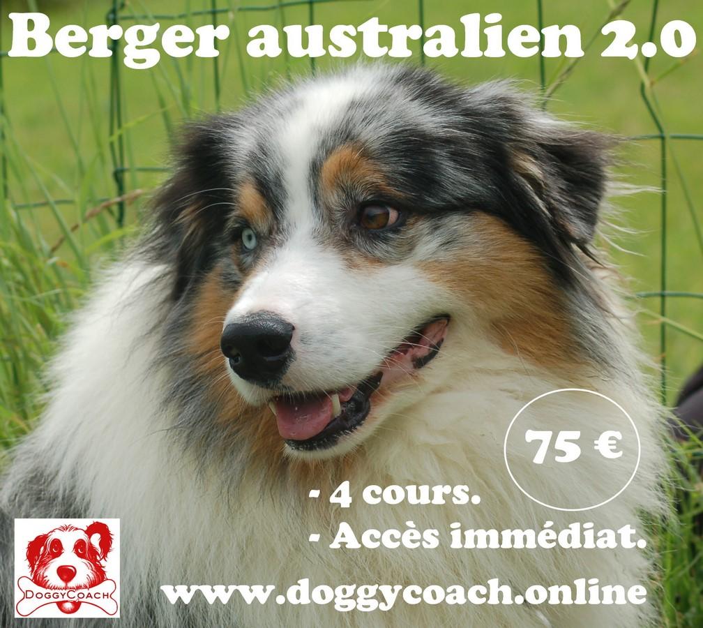 Berger Australien 2.0