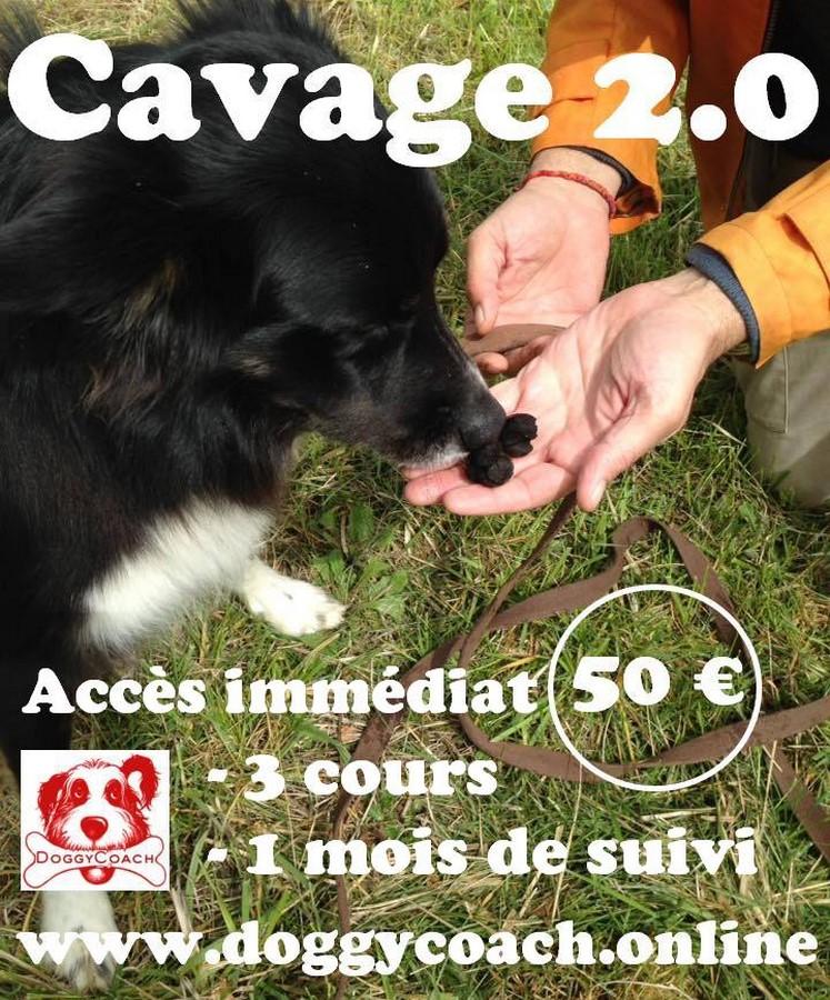 Cavage 2.0