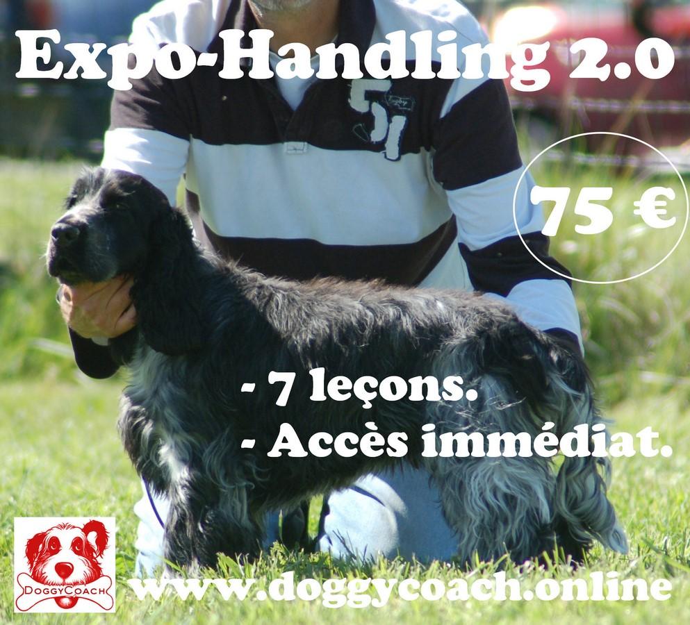 Expo-Handling 2.0